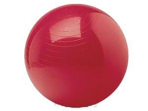 כדור פיזיותרפיה