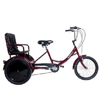 Adult and 2 children rickshaw bikes