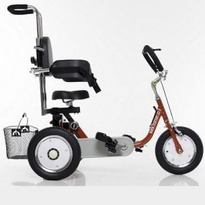 "Tricycle ""12"" for special needs with side supports"