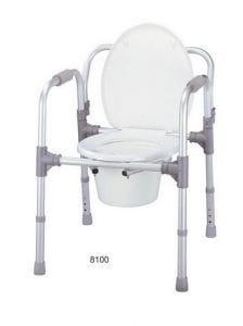Toilet seat and bathing model 8100