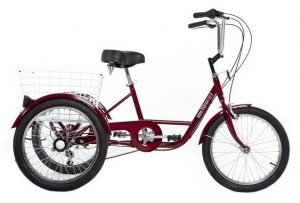 """Large tricycle for adults """"20"""